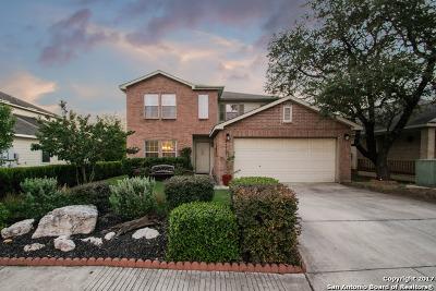 San Antonio Single Family Home New: 24023 Wimberly Oaks