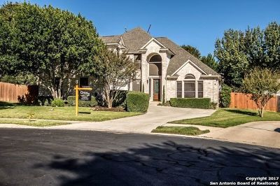 San Antonio Single Family Home New: 1123 Branch Spg