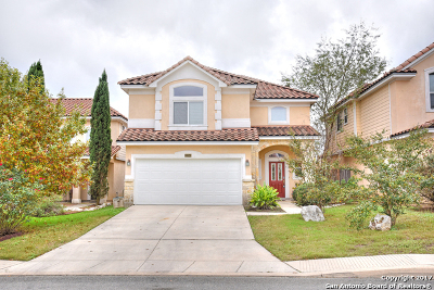 Bexar County Single Family Home New: 1334 Crown Brk