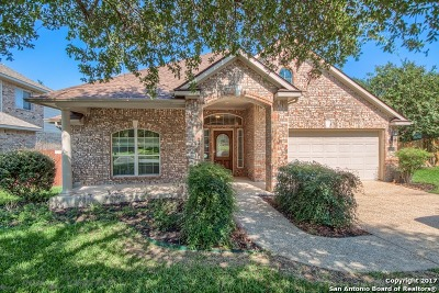 Bexar County Single Family Home New: 20437 Wild Springs Dr