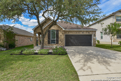 Bexar County Single Family Home New: 23227 Cardigan Chase