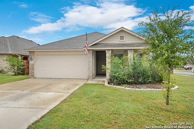 New Braunfels Single Family Home New: 933 Darion St