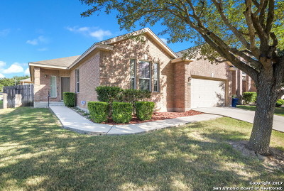 Bexar County Single Family Home New: 17138 Darlington Run
