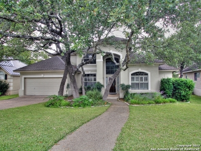 Bexar County Single Family Home New: 29223 Oakview Bend