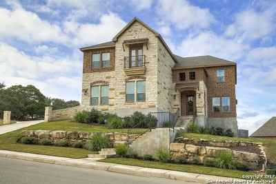Boerne Single Family Home For Sale: 7907 Platinum Court