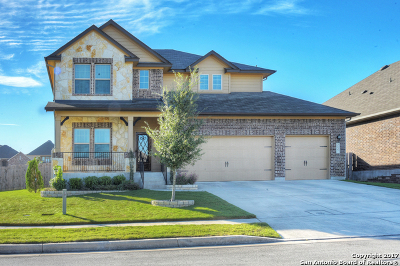 New Braunfels Single Family Home New: 3137 Birch Bend