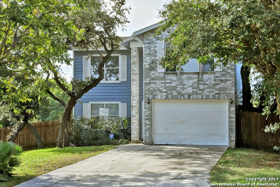 San Antonio TX Single Family Home New: $189,500