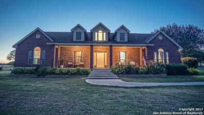 Cibolo Single Family Home For Sale: 453 Tolle Rd