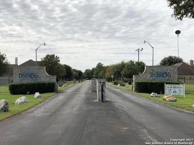 Seguin Residential Lots & Land For Sale: 119 Arroyo