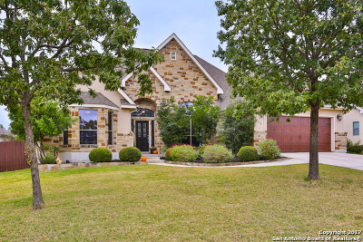 Boerne Single Family Home For Sale: 238 Lone Tree