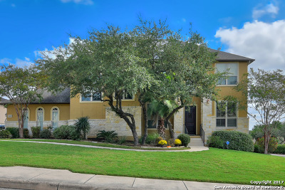 Boerne Single Family Home For Sale: 10458 Star Mica