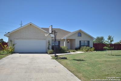 Seguin Single Family Home For Sale: 120 Castle Breeze Dr