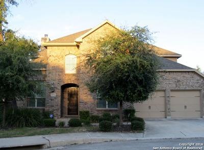 San Antonio TX Single Family Home For Sale: $409,900