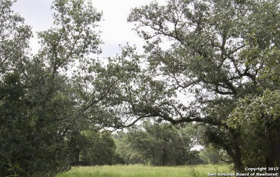Guadalupe County Residential Lots & Land For Sale: 950 Stillwater Ln