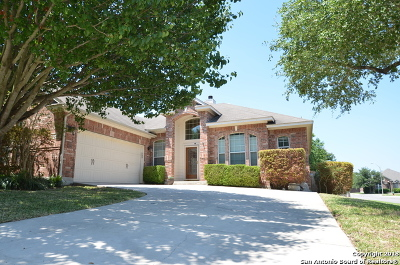 Cibolo Single Family Home For Sale: 201 Summit Vw