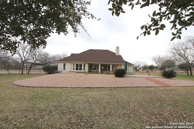 Single Family Home For Sale: 13803 Abbey Ct