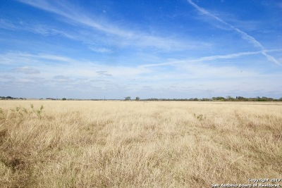 Floresville TX Farm & Ranch For Sale: $179,999