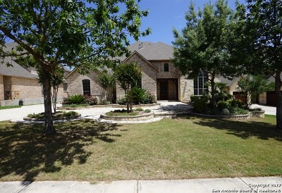 San Antonio Single Family Home For Sale: 7435 Stonewall Hl