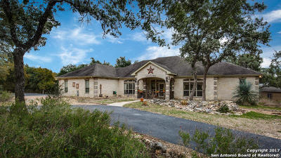New Braunfels Single Family Home For Sale: 142 Westwood