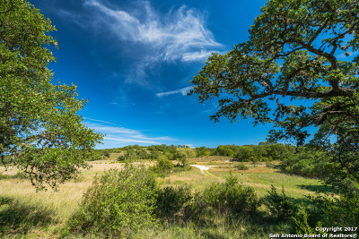 Spring Branch Farm & Ranch For Sale: Tbd Hwy 281