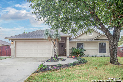 Single Family Home For Sale: 1245 Luckenbach