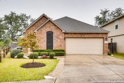Single Family Home For Sale: 21850 Thunder Basin