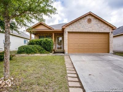 Boerne Single Family Home New: 25638 Presidio Aly