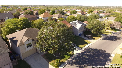 Converse Single Family Home Back on Market: 8107 Chestnut Manor Dr