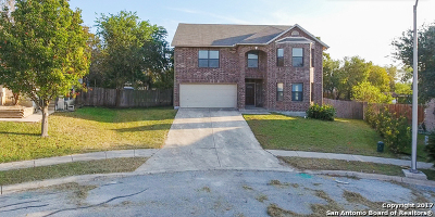Cibolo Single Family Home For Sale: 101 Springtree Grv