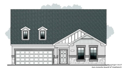 Single Family Home Price Change: 434 Pecan Meadows