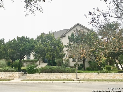 San Antonio Single Family Home For Sale: 24903 Birdie Rdg