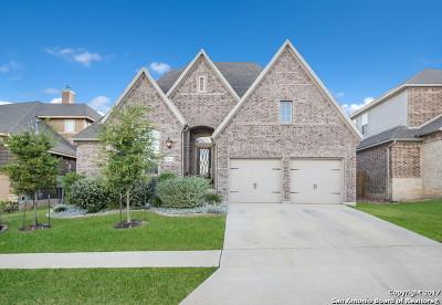 San Antonio Single Family Home For Sale: 18623 Gran Mesa
