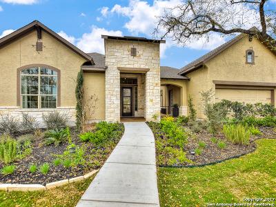 San Antonio Single Family Home For Sale: 17727 Horseman