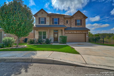 Helotes Single Family Home For Sale: 10760 Barnsford Ln