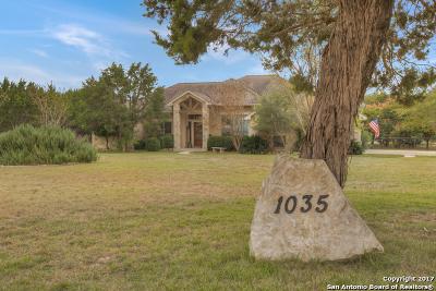 Spring Branch Single Family Home Price Change: 1035 Stirrup Dr