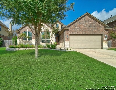 Boerne Single Family Home For Sale: 8111 Mystic Chase