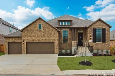 Bexar County Single Family Home For Sale: 12023 Bailey Hills