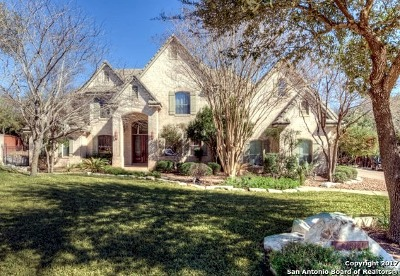 San Antonio Single Family Home New: 24814 Jordans Way