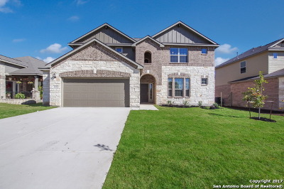 New Braunfels Single Family Home For Sale: 349 Green Heron