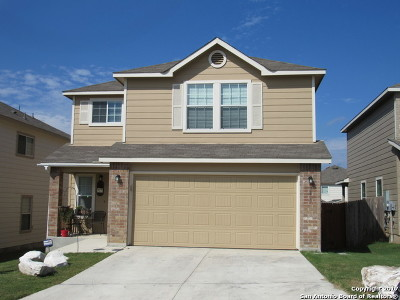 San Antonio Single Family Home For Sale: 3819 Running Rnch