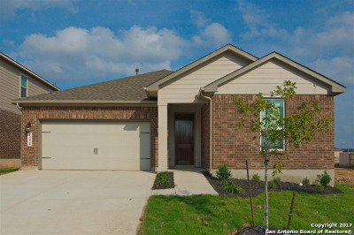 Single Family Home For Sale: 22420 Carriage Trace