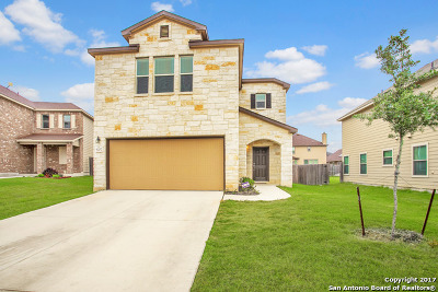 San Antonio Single Family Home For Sale: 9207 Wind Crown