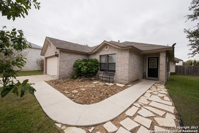 Boerne Single Family Home For Sale: 126 Christen Ct