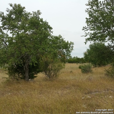 Boerne Residential Lots & Land For Sale: Lot 29 River Crossing