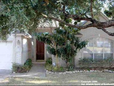 Bexar County Single Family Home New: 9610 Rocksprings St