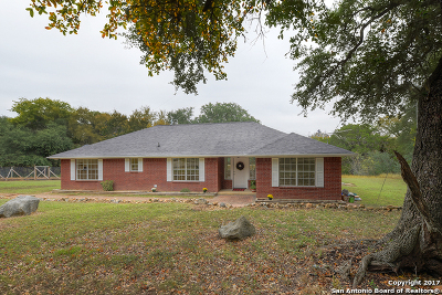 New Braunfels Single Family Home For Sale: 22145 Old Nacogdoches Rd