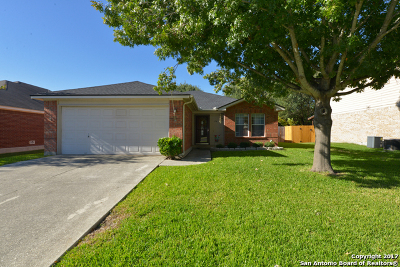 Cibolo Single Family Home New: 174 Spice Oak Ln