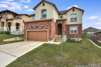 San Antonio Single Family Home New: 1438 Rock Dove Rd