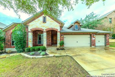 San Antonio Single Family Home New: 1026 Solitude Cv