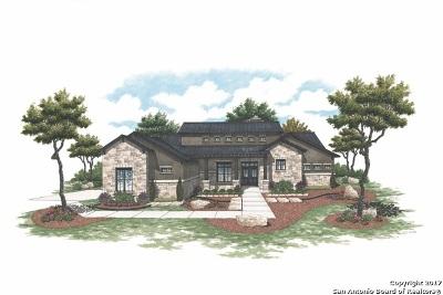 Bandera County Single Family Home For Sale: 1285 Palomino Springs